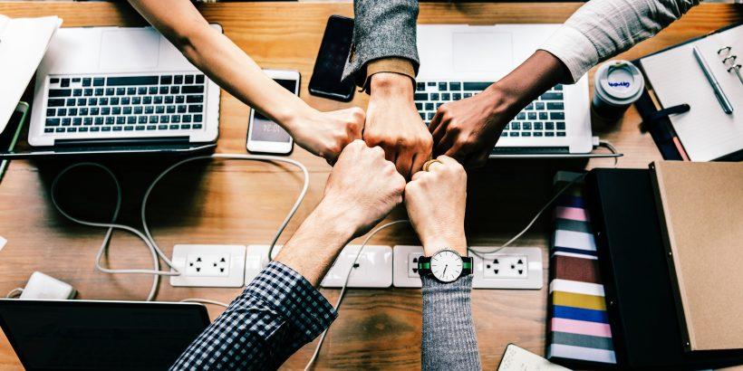 Netzwerke: Organisationen